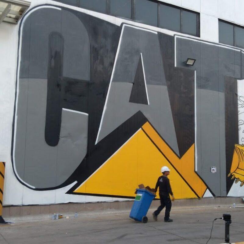 cat-9